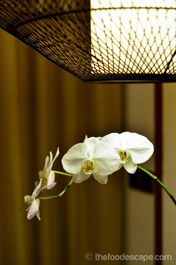 Shower Room Lighting Regulations